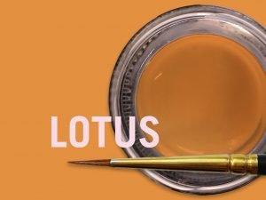 MiYO Trans Lotus